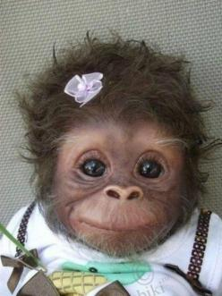 if this doesn't make you smile...................there is something wrong with you: Baby Monkey, Face, Babies, Animals, Sweet, So Cute, Funny, Adorable
