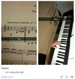 It's not easy, being an artist... any kind of artist... but especially a musician :P: Orchestra Problem, Cardboard Boxes, Marching Band, The Piano, Band Geek, Musician Problems Funny, Music Humor