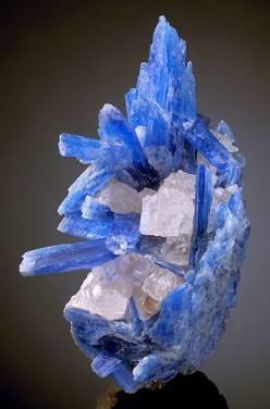 Item #A4 Aesthetic cluster of translucent to gemmy blue Kyanite crystals with Quartz! These fine blades spread out in every direction and display flat and slanted terminations. The blades glow even in faint lighting and become fully translucent to transpa