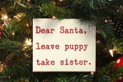 Leave Puppy, Take Sister Box Sign: Leave Puppy, Box Sign, Holiday Sign, Christmas Signs