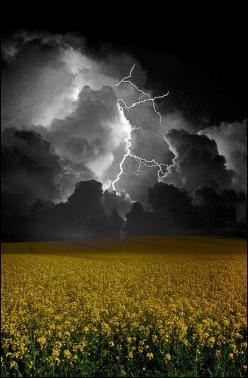 Mikael's Playground : Photo: Stormy Weather, Beautiful, Cloud, Nature S, Storms, Mother Nature, Flower