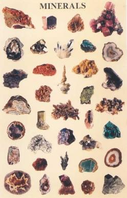 min·er·al (mnr-l) n.  1. A naturally occurring, homogeneous inorganic solid substance having a definite chemical composition and characteristic crystalline structure, color, and hardness.: Gemstones, Inspiration, Stuff, Nature, Crystals Minerals, Minerals