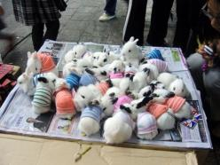 : Rabbit, Bunnies Wearing, Animals, Wearing Sweaters, Bunny, Pet, Baby Bunnies, Adorable, Things