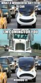 really it's not funny, This is how the truckers really drive, and that is why so many deaths!!!: Funny Pics, Funny Pictures, Cars, Random, Funny Stuff, Humor