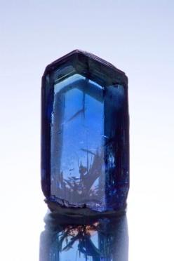 Tanzanite from Tanzania / 31st July 2011 | No 68. Mineralia [iRocks: Tanzanite from Merelani Mines, Lelatema Mts, Arusha Region, Tanzania] : Gems Crystals Minerals, Gemstones Minerals, Beautiful Blue, Minerals Crystals Gems, Beautiful Gemstones, Crystals