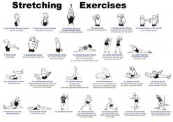 Whole body stretching routine for improved flexibility and health. You dont realize how important flexibility is until you injure something! #yoga #flexibility #fitness: Body, Health Fitness, Workouts, Google Search, Stretching Exercises, Yoga, Flexibilit