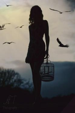 'A Forest Bird Never Wants a Cage'  Inspired by Henrik Ibsen  Photography by Anny To Photography: Picture, Photos, Inspiration, Freedom, Birdcage, Art, Silhouettes, Birds, Photography