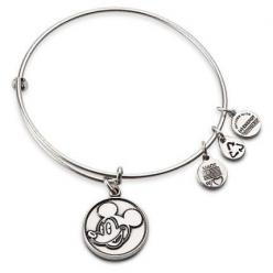 alex and ani disney - Google Search: Charm Bracelets, Disney Store, Ani Bracelet, Alex And Ani, Castle, Alexandani, Bangle, Alex O'Loughlin, Disney Worlds