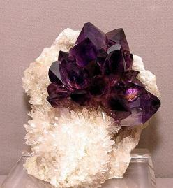 Amethyst~Using an Amethyst as a meditation focus will increase the positive spiritual feelings. Amethyst helps overcome fears and cravings. It also helps relieve headaches: Rocks Minerals Gems Stones, Amethysts, Crystals Minerals Gemstones, Minerals And R