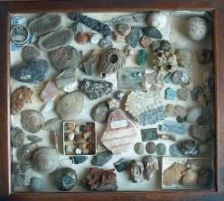artefacts, rock collection: Eye Collections, Attractive Collections, Rock Collection Display, Crystals Rocks, Gipsea Field, Rock Collections, Jennilynn Loves Globes, Collection Displays