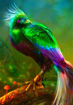 Bird of Paradise: Fantasy, Animals Insects Birds Reptiles, Color, Astranci, Artist, Beautiful Birds, Animals Birds
