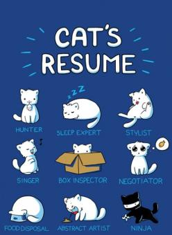Cat's Resume, minus the hunter that's my Monkey! Especially abstract artist -___-: Animals, Cat S Resume, Stuff, Funny, Crazy Cat, Cat Resume, Kitty, Cats Resume, Cat Lady
