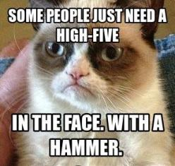 Grumpy cat quotes, grouchy quotes, grumpy cat jokes, grumpy cat humor, grumpy cat pictures …For the best humor pics and memes funny visit  www.bestfunnyjokes4u.com/lol-funny-cat-pic/: Funnycatmemes Funnycats, Funny Grumpy Cat Pictures, Funny Cat, Funny Qu