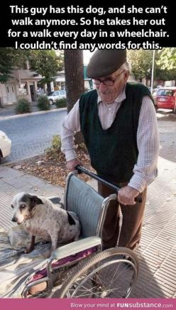Guys like him make the world a better place…: Animals, Dogs, Humanity Restored, Sweet, Pet, People, Walk, Friend