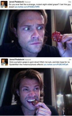 Hahahaha! Omg, he's such a dork...and the second picture, I may be slightly in love with his HAIR! :): Supernatural Pumpkin, Face, Octo Pumpkin Grape, Jared Padalecki, Dean O'Gorman, Jaredpadalecki Supernatural, Grape Man, Supernatural Cast, Secon