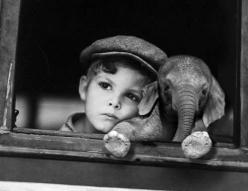 I'm not sure which is cuter, the boy or the elephant. Sketch idea for art competition?: Picture, Animals, Baby Elephants, Pet, Things, Boy, Friend, Photography, Kid