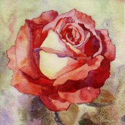 Painting  watercolour Rose Honey Glaze Ceramic tile by SobolevaArt: Pink Roses, Art Watercolor, Rose Paintings, Watercolor Flower, Painting Rose, Watercolor Rose, Art Painting