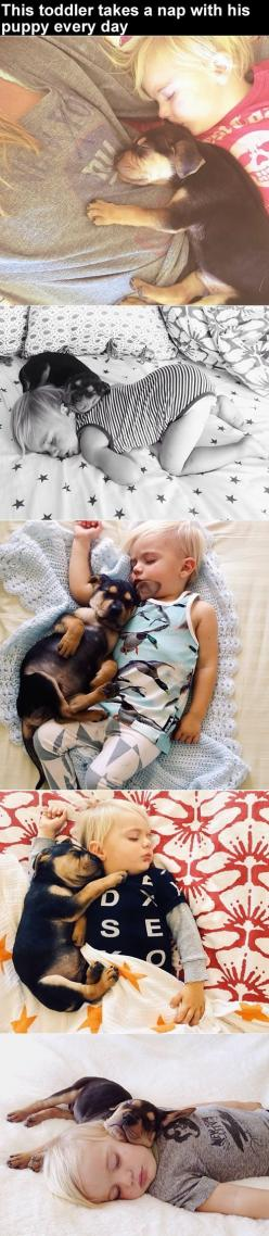 Puppy couldn't sleep - missed his siblings - until he began sleeping with new baby brother: Best Friends, Puppy Love, My Life, Began Sleeping, Day, Dog, Little Boys, Kid, Animal