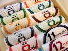 Set of 12 Month 2 Month Milestone Beautiful Owl Baby Boy, Perfect Baby Shower Gift, Comes with Gift Box, Paper Wrap and Gift Tag
