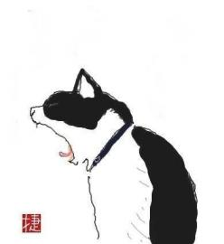 Shozo Ozaki cat: Collage Painting Illustration, Ink Illustration, Japanese Illustration, Cat Illustrations, Cat Illustration Cute, Cat Illustration Simple, Japanese Cats, Chat