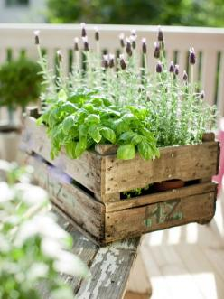 The Best 30 DIY Vintage Garden Project You Need To Try This Spring: Idea, Outdoor, Gardens, Herbs Garden, Wooden Crates