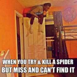 This man is me...: Funny Pics, Spiders, Funny Pictures, Quote, So True, Funny Stuff, Funnies, Humor