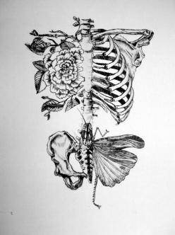 Would be nice as a tatoo, no ?     Illustration by Rebecca Ladds: Tattoo Ideas, Skull, Inspiration, Tattoos, Illustration, Art, Drawing, Ink