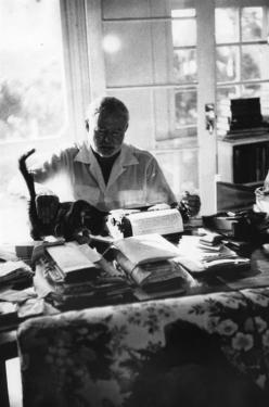 """""""A cat has absolute emotional honesty: human beings, for one reason or another, may hide their feelings, but a cat does not.""""  Ernest Hemingway: Cats, Books, Hemingway Cat, Author, Ernest Hemingway, Famous People, Writing, Writers"""