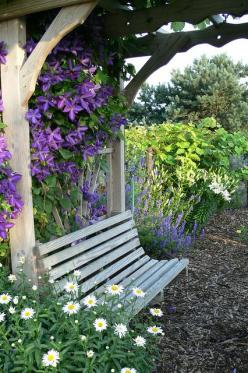 Arbor with clematis & bench seat. Arbors not only add character to your garden but are a clever vertical structure to grow climbers like edibles or flowers. They soften the frame, add colour, increase growing space and create a shaded nook. More desig