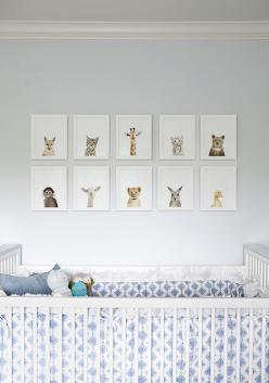 Baby Nursery Wall Art: a grouping of 'Little Darlings' by The Animal Print Shop: Nurseries, Nursery Ideas, Baby Room, Animal Prints, Baby Animals, Kids Rooms