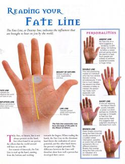 Divination:  #Palmistry ~ Reading your Fate Line.: Palmestry Palmistry, Palmistry Reading, Hands Hermanos, My Grimoire 10 Palmistry, Palmistry Hand, Palm Readings, Apothecary Palmistry Spiritual, Palm Reading Palmistry