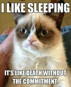 "Grumpy Cat-""I like sleeping. It's like death without the commitment."":"
