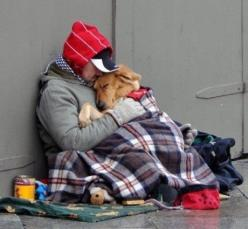 "I posted this in ""people"" simply because nothing else could cover this. Just so precious. That's real love my friends.  wow...: Picture, Animals, Best Friends, Dogs, Heart, Sweet, Pet, Things, Man"