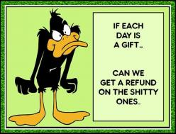 If Each Day Is A Gift quotes quote lol funny quote funny quotes looney toons daffy duck bugs bunny humor: Funny Sayings, Looney Tunes, Funny Stuff, Gifts, Funny Quotes, Humor, Funnies