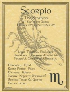 If you have won a Scorpio Man's love, you now hold great power in your hands.  Treat his heart gently because he trusts you.  Give him your respect and honesty, and he will always do the same to you.: Scorpio Zodiac, Scorpio ️, Zodiac Poster, Book Of