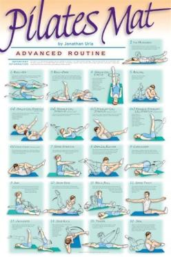 Pilates - Advanced Mat Routine  1. The Hundred 2. Roll Up 3. Roll-Over 4. Single Leg Circle 5. Rolling 6a. Single Leg Stretch 6b. Double Leg Stretch 6c. Straight Leg Stretch 6d. Double Straight Leg Stretch 6e. Criss-Cross 7. Spine Stretch 8. Open Leg Rock