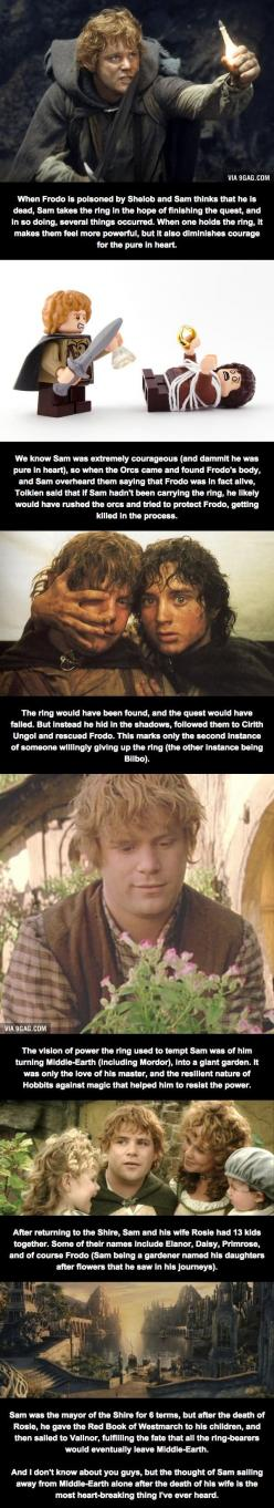 Relatively Unknown LoTR Facts (Part 4) - Samwise The Brave: Hobbit Facts, Lotr Facts, The Lord Of The Rings Facts, Rings The, Favorite Character, Unknown Lotr, Hobbit Lord, Tolkien Lord Of The Rings