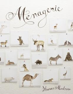 Sharon Montrose incredibly poignant and pure animal prints - Menagerie: Coffee Tables, Books, Sharon Montrose, Photo Book, Design, Animal