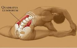 This is a Muscle that causes lower back pain from lack of stretching... The QL must be stretched daily, specially if you sit all day.: Ql Stretch, Yoga Stretch, Side Stretch, Stretched Daily, Muscle, Lower Backs, Hip Pain, Back Pain, Workout
