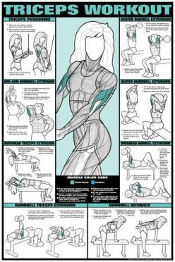 : Upper Body, Arm Workout, Fitness, Workouts, Exercise, Triceps Workout, Work Out, Health