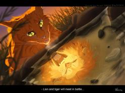 Warrior cats by Erin Hunter, art by Mizu-no-Akira. Firestar: Lion, Warrior Cats, Warriorcats Cats, Cat Warriors, Warriors Cats, Warriors Warriorcats, Warriorcats Images