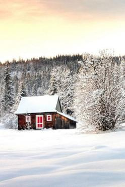 A blanket , a book, a hot cup of hot coco... Perfect: Red Doors, Winter Cabin, Dream, Little Cabin, Winter Wonderland, House, Place, Cabin Fever