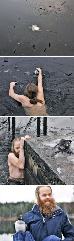 Awww: Random Pictures, This Man, Real Man, Hero, Faith In Humanity Restored, Man Saves, Animal