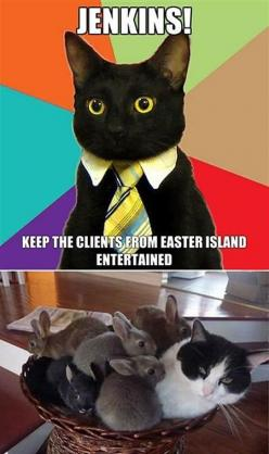 Cat: Funny Animals, Kitty Cat, Easter Island, Funny Cats, Funny Pictures, Businesscat, Funnies, Business Cat