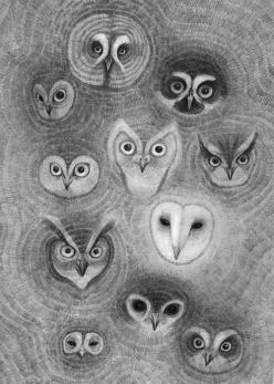 darksilenceinsuburbia: Ooli Mos.  http://orkacollective.com/  (****Duplicate Pin): Animals, Drawings, Orka Collective, Art, Illustration, Owl Faces, Owls
