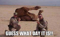 Guess what day it is!!! HUMP DAYYYYEEEE