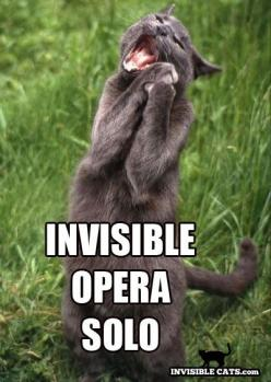 Kitty Opera!  Check out Heart's Performing Arts, an in home music lesson service in Minneapolis!   Links: www.heartsperformingarts.com www.facebook.com/heartsperformingarts: Funny Cat Memes, Music Meme, Invisible Cats, Funny Cats Invisible, Cat Stuff, Inv