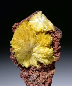 Legrandite  Locality: Mina Ojuela, Mapimi, Durango, Mexico: 08 Dc Pav, Durango, Mexico Taille 0 53, Means Cations, With Cation, Photo