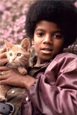 Michael Jackson    Famous People  multicityworldtravel.com We cover the world over 220 countries, 26 languages and 120 currencies Hotel and Flight deals.guarantee the best price: Cat People, Music, Cats, Young Michael, Famous People, Michaeljackson, Micha