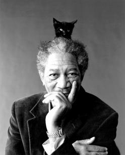 Morgan Freeman and friend: Cats, Kitten, Morgan Freeman, Famous People, Morganfreeman, Movie, Actor, Black Cat